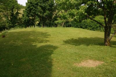 Garten, nachdem der Gartenpool entfernt wurde
