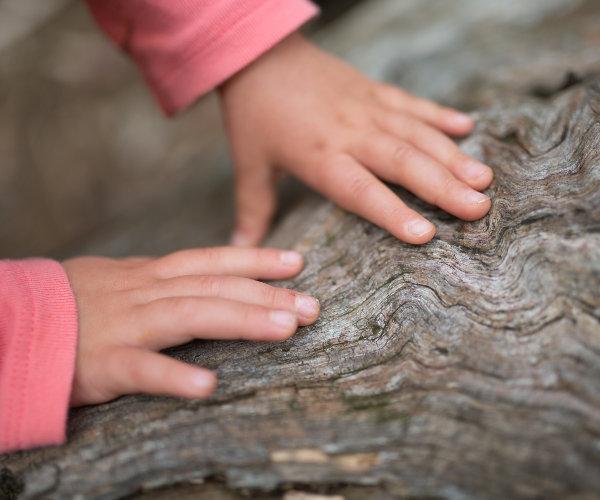 Waldspiele mit Kindern
