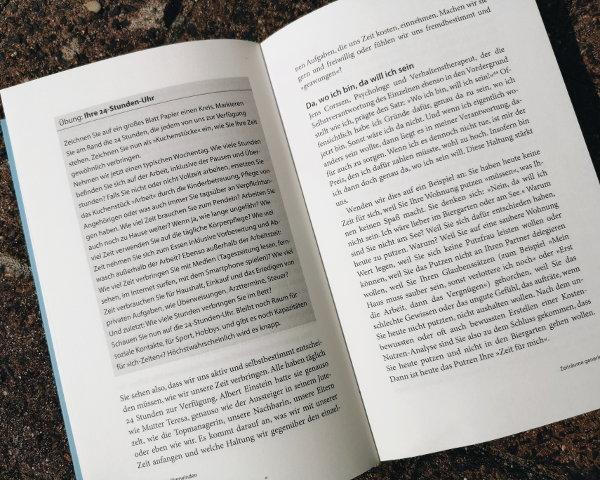 Auszug Buch Das Prinzip Selbstfürsorge