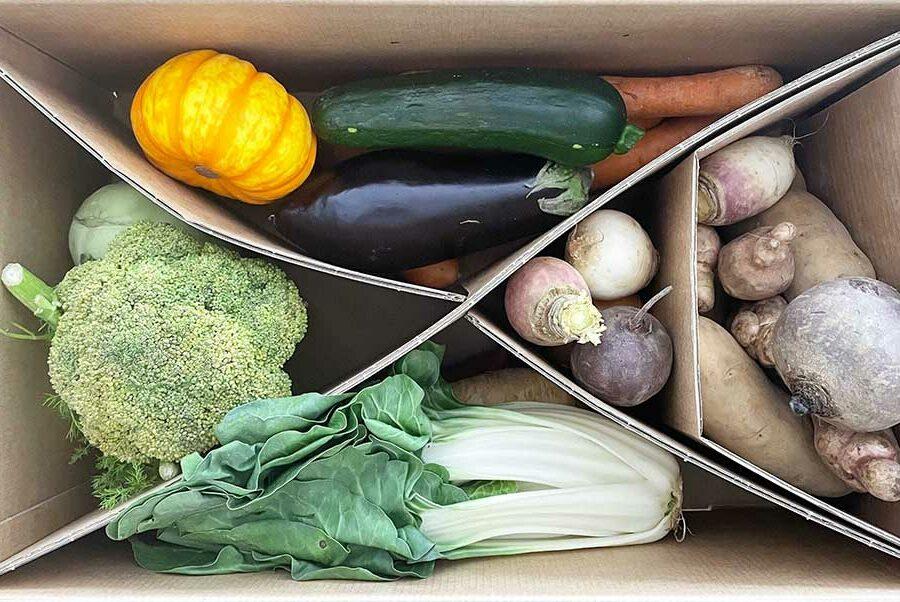 etepetete Erfahrung – Gemüse-Abobox im Test